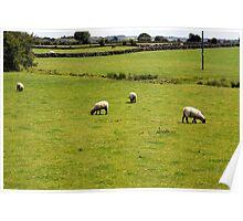 Farmland, Ireland. Poster