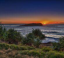 fingal headland sunrise by Jayde Aleman