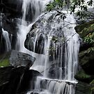 Midway Somersby Falls NSW Australia by Bev Woodman