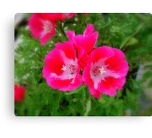 Striking Pink Canvas Print