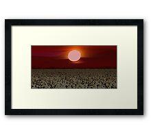 Carolyn's Red White Canola Moon Framed Print