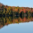 Autum Shoreline by pshootermike