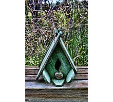 Bird House With Grass Background Photographic Print