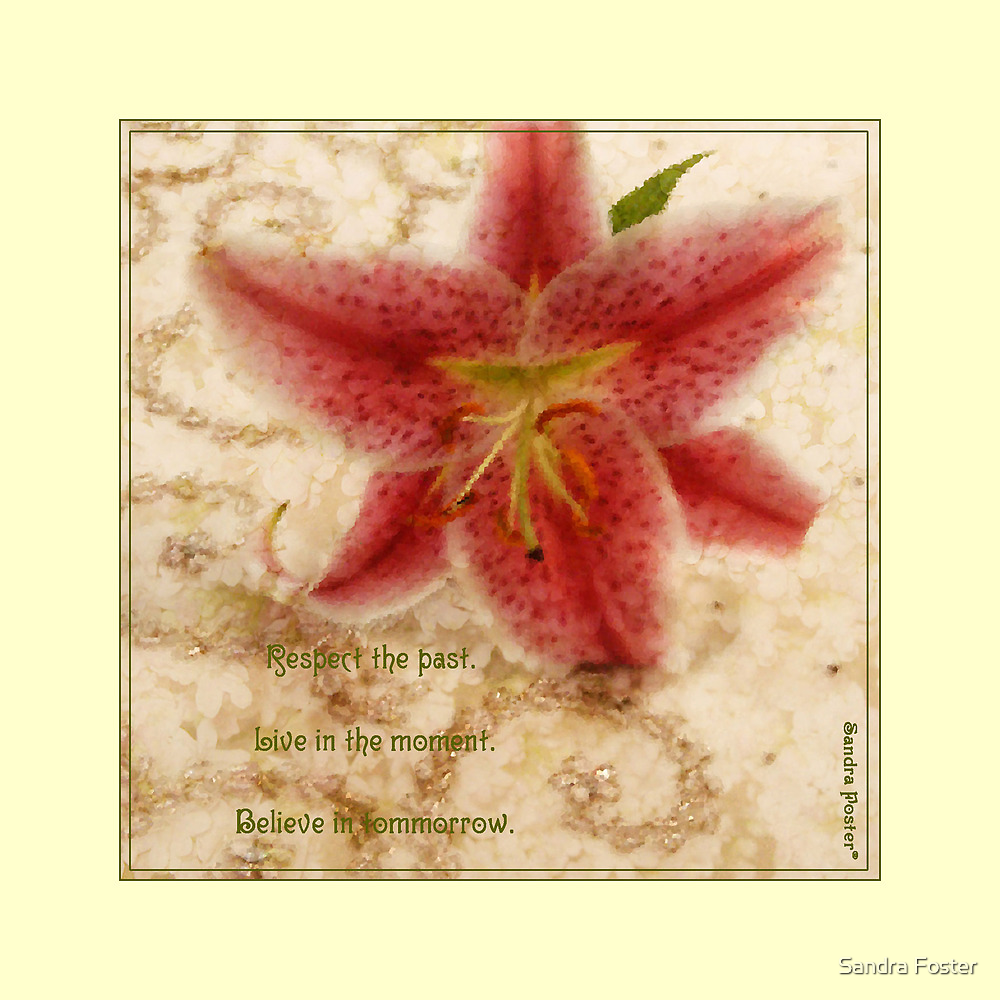Lily On Beaded Background by Sandra Foster