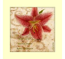 Lily On Beaded Background Photographic Print