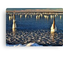 Icy Lake In Morning Light Canvas Print