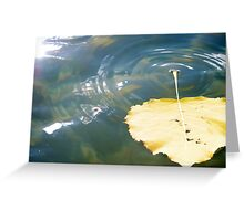 Autumn Ripples Greeting Card