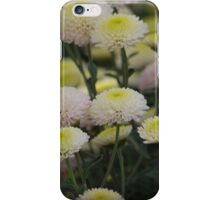 Cheery Crysanthemum's iPhone Case/Skin