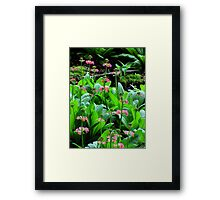 Too Pretty Framed Print