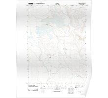 USGS Topo Map Oregon Cow Lakes 20110819 TM Poster