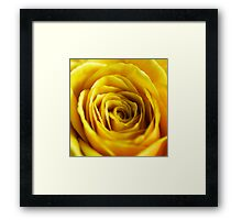 Colour Of Life XIV [Print & iPad Case] Framed Print