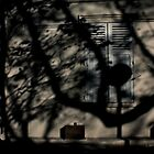 Shadows were swallowing the city giving birth to a new world...... by 1morephoto
