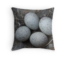 Abandoned eggs in a nest. Throw Pillow