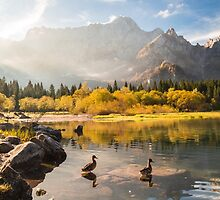 autumn morning in the alps by zakaz86