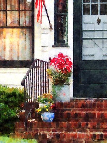 Fall Flowers in Fancy Pots by Susan Savad