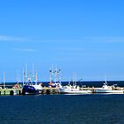 Harbour at Cheticamp, Nova Scotia by Peggy Berger
