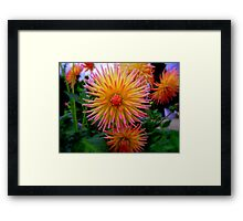 A Touch Of Colour's Framed Print