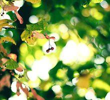 breathe the autumn air by faithie