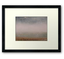 Hay Bales and Fog Framed Print