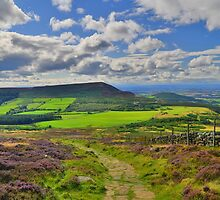 Yorkshire: The Path Along Cringle Moor by Rob Parsons
