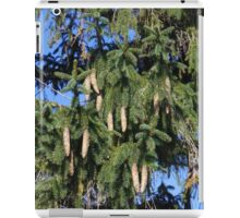 Pinecone and Fir tree iPad Case/Skin