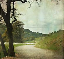 Walk of Life by Laurie Search