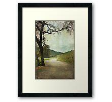Walk of Life Framed Print