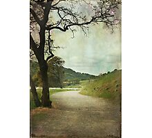 Walk of Life Photographic Print