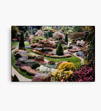 I never promised you a rose garden...  Canvas Print