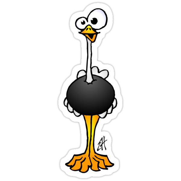 Ostrich by cardvibes