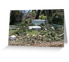 Tidal surge debris after Cyclone Yasi - Cardwell, North Queensland, Australia Greeting Card