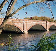 Anderson Bridge by Kerry Dunstone
