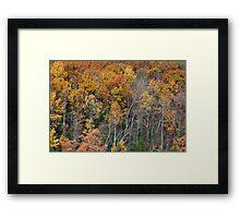 New England Fall Framed Print