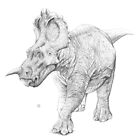 Centrosaurus Apertus by A V S TURNER