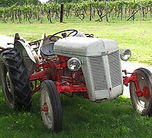 Old Ferguson Tractor  by Sherry Graddy