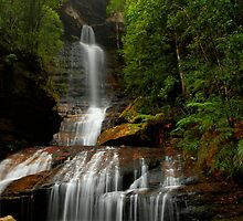 Empress Falls, New South Wales. by Andy Newman