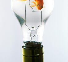 Goldfish in light bulb  by Garry Gay