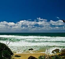 Broken Head, NSW, Australia by benjilach