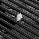 Leaf and Bench by jrier