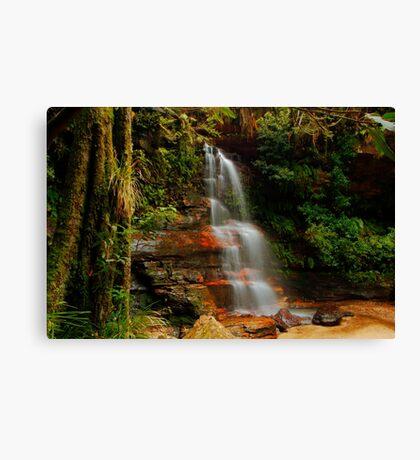Federal Falls, New South Wales. Canvas Print