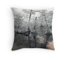 Unreal Reflections Throw Pillow