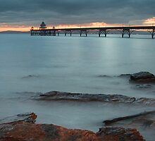 Clevedon Pier by Denise McDonald