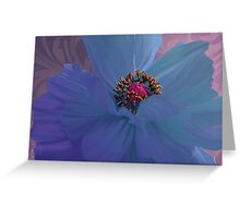 Afterglow, Vibrant, colorful poppy floral art Greeting Card