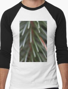pine in the forest Men's Baseball ¾ T-Shirt