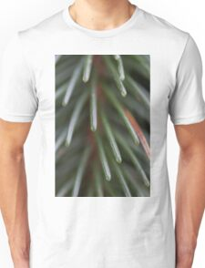 pine in the forest Unisex T-Shirt