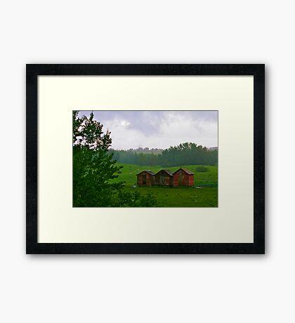 Pastoral Scene Framed Print