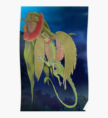gumnut dragon Poster