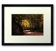 Sunshine On My Shoulders Framed Print