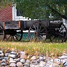 Workless Hay Wagon by Leslie van de Ligt