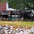 Workless Hay Wagon by Leslie van de Ligt